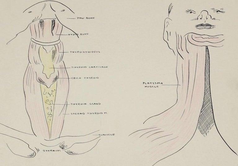 Academic Throat Study 1950s Mixed Media - Art by Dellard Cassity