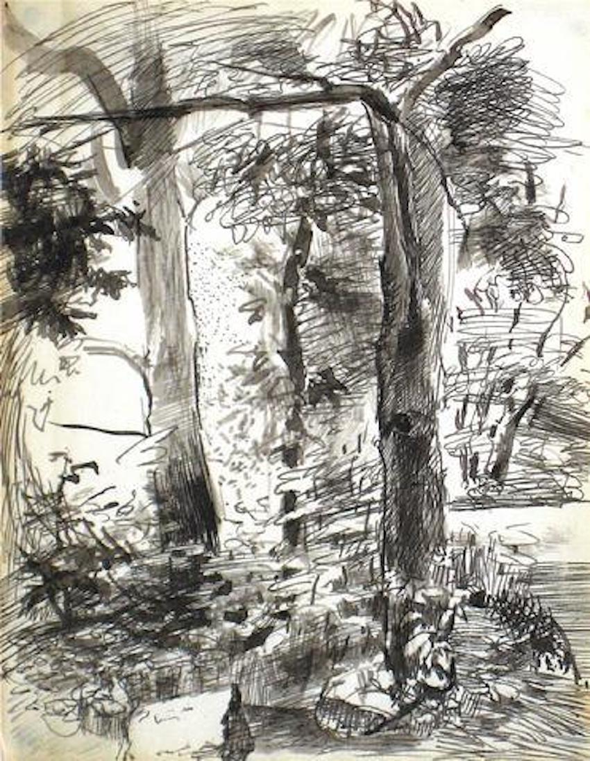 Central Park Study 1940-60s Ink Drawing