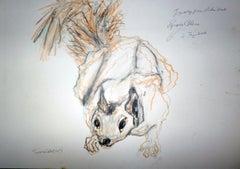 Esquirelle Blanc (from Wild Animals)