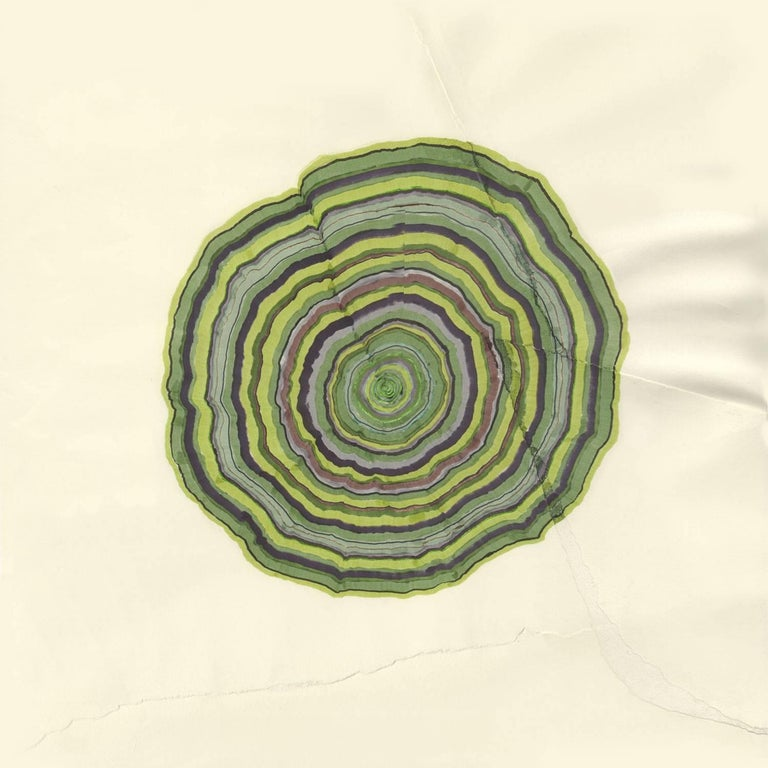 46 Years (Tree Rings Series) - Contemporary Art by Steven L. Anderson