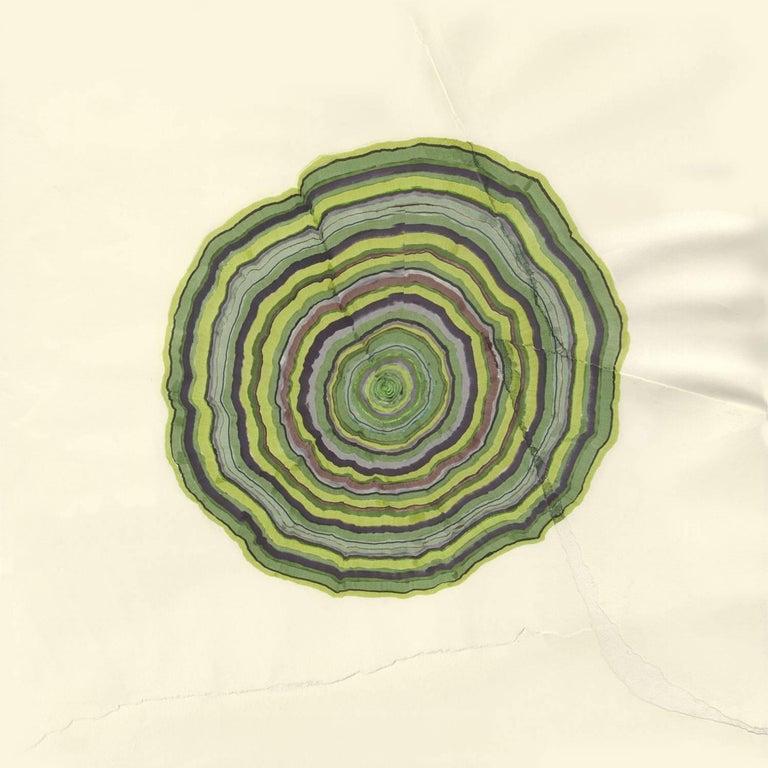 162 Years (Tree Rings Series) - Beige Landscape Art by Steven L. Anderson