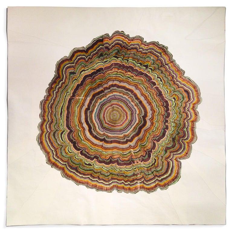 Steven L. Anderson Landscape Art - 162 Years (Tree Rings Series)