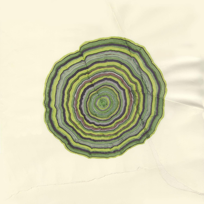 63 Years (Tree Rings Series)