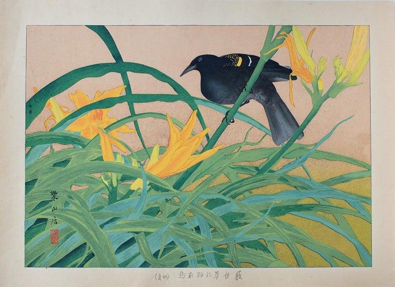 Yellow Daylily and African Black Bird - Print by Tsuchiya Rakusan