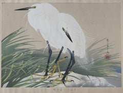 White Herons and Wild Sweet Flag Flowers