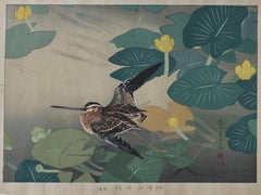 Sandpiper and Yellow Lotus Flower