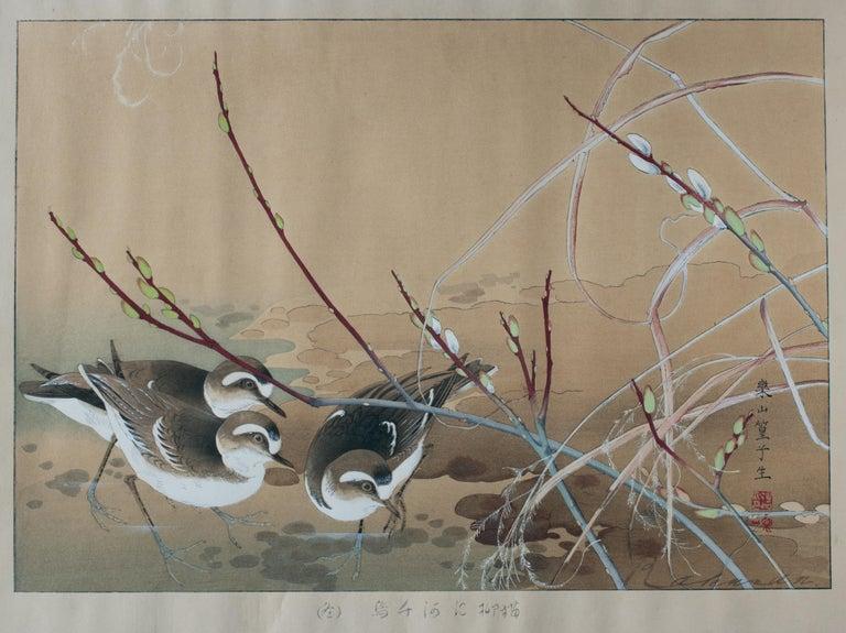 Tsuchiya Rakusan Animal Print - River Plovers and Pussy Willow