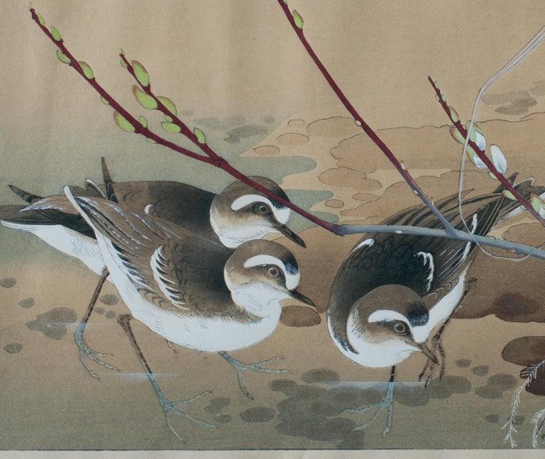 River Plovers and Pussy Willow - Print by Tsuchiya Rakusan