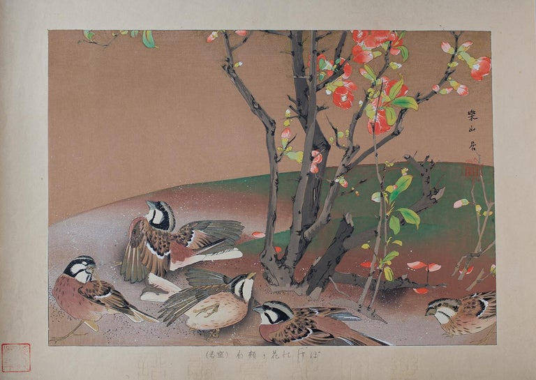 "Meadow Buntings enjoy a dust bath beneath a blooming quince bush. Number 8 in Rakusan's finest bird-and-flower series. The Japanese title may be translated ""Quince Flowers and Meadow Buntings (Mid-Spring}."" {Boke no hana to hôjiro (sieshun)}. The"