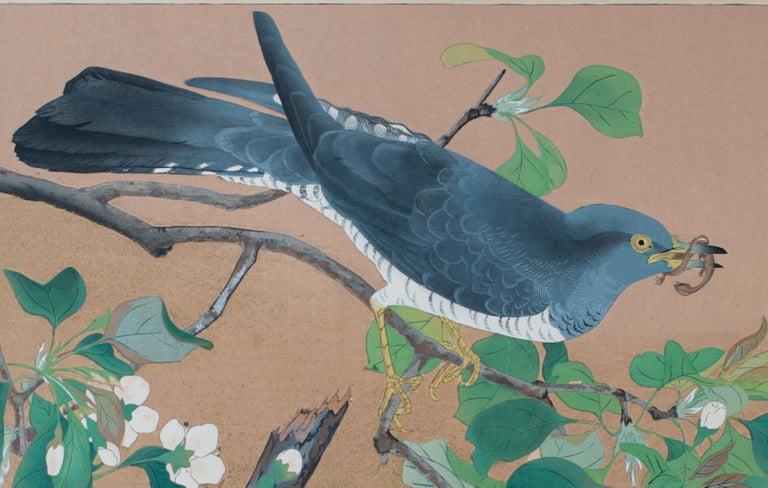 Cuckoo and Wild Pear Flowers  - Print by Tsuchiya Rakusan