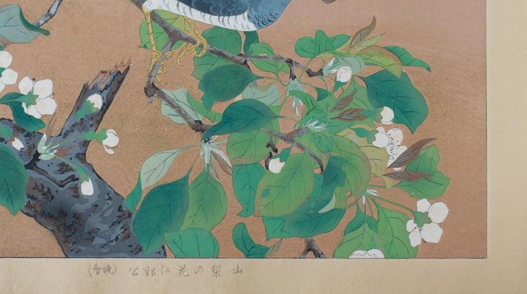 Cuckoo and Wild Pear Flowers  - Brown Animal Print by Tsuchiya Rakusan