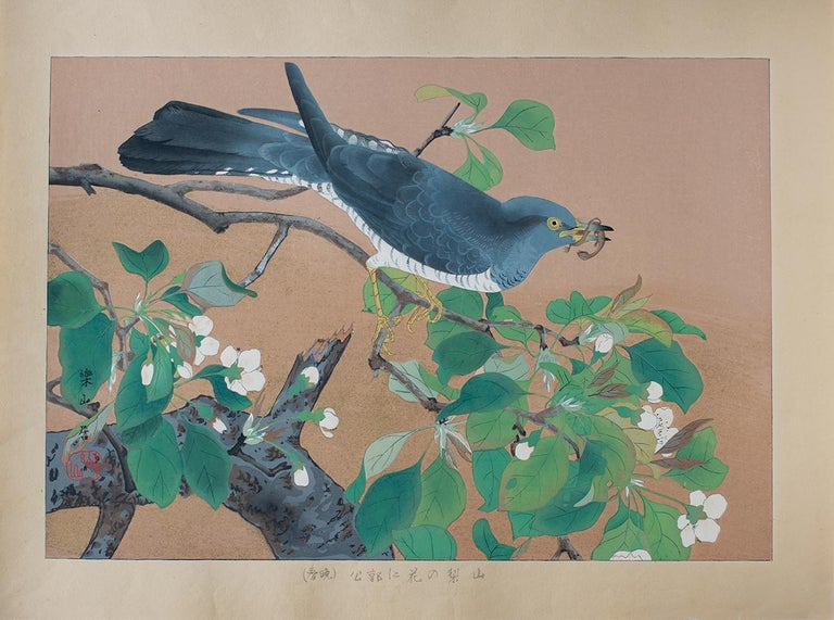 """A cuckoo has nabbed a small lizard and perches on a blooming mountain pear branch. Both are native to Japan, and the cuckoo was a culturally important bird in literature and folklore. The Japanese title may be translated """"Wild Pear Flowers and"""