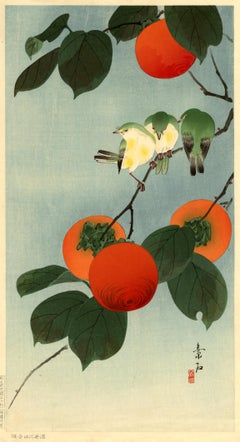 White Eyes and Persimmons