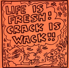 Rare Keith Haring Vinyl Record Art (Keith Haring Crack Is Wack)