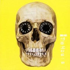 Damien Hirst Record Skull Art
