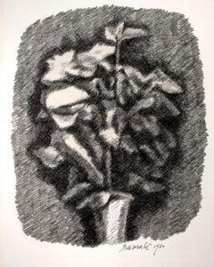 Mazzo di fiori con ombra (Shadowed Bouquet)