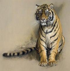 Study of Sumatran Tiger