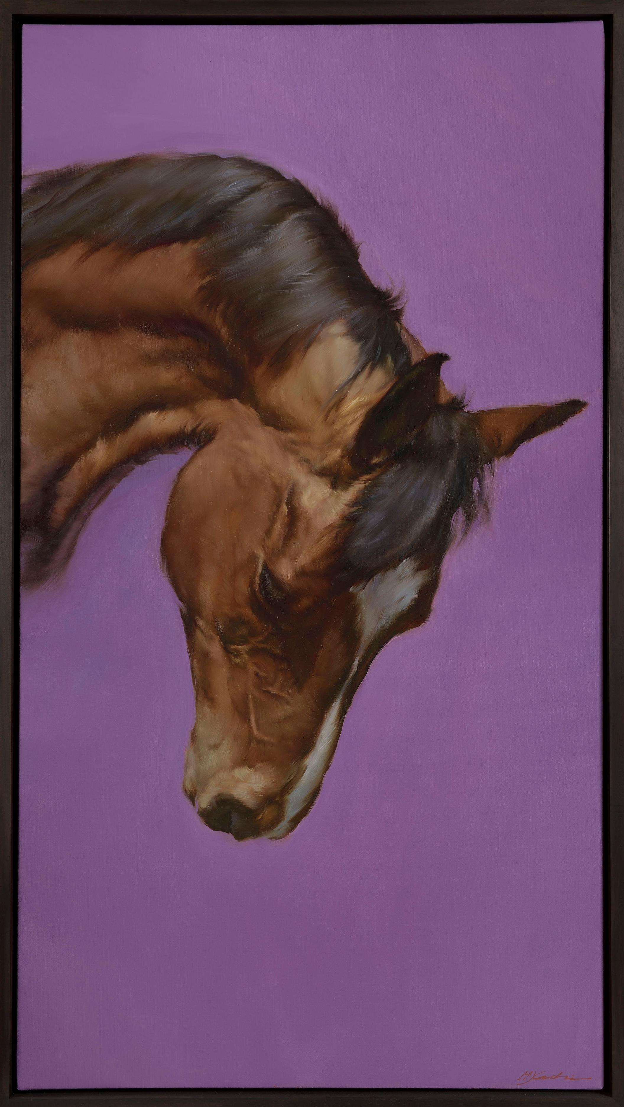 Equus VI