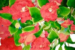 Bright Camellias