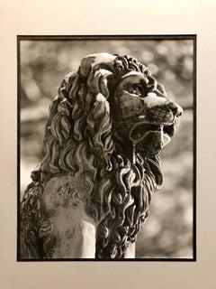 Stone Lion Sculpture Photograph, Jerusalem Vintage Silver Gelatin Photo Print