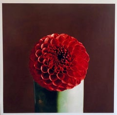 Red Dahlia Flower Large Format Photo 24X20 Color Photograph Beach House RI