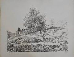 Avigdor Arikha Modernist Israeli Lithograph Jerusalem Landscape Bezalel School
