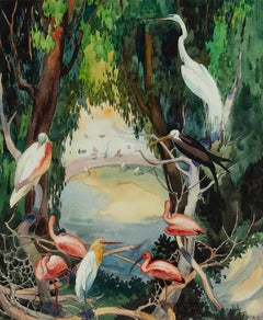 Tropical Birds at a waterhole, Flamingos, Swans, Egrets- San Diego Zoo
