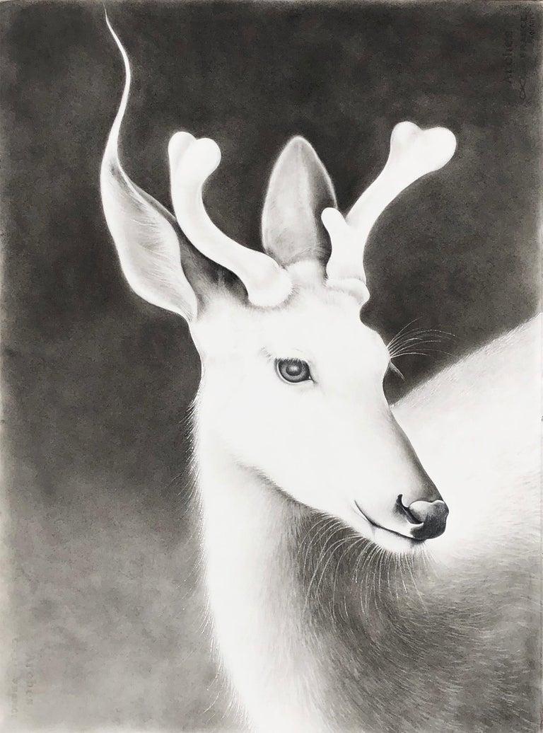 Buck - Art by Amy Ross