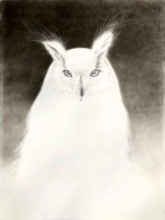 Owl Spirit 3