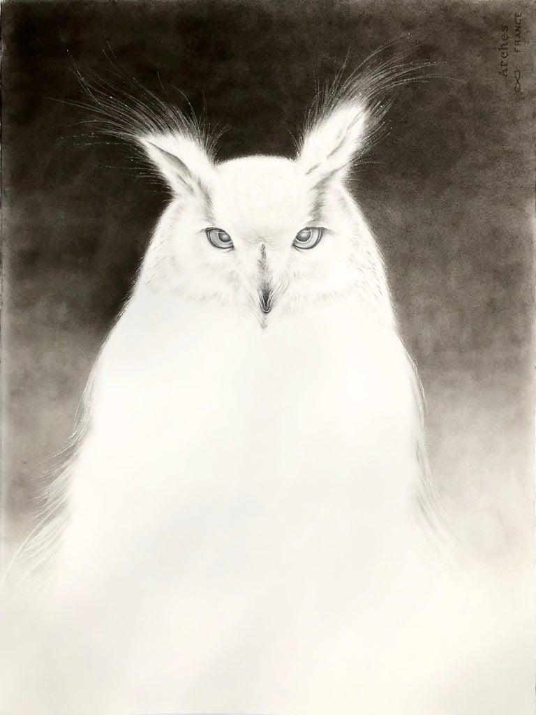 Owl Spirit 3 - Art by Amy Ross