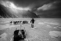 Arctic Journey