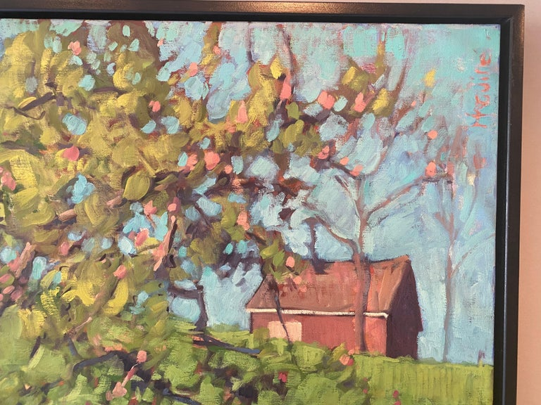 The Little Apple Tree on the Farm For Sale 1