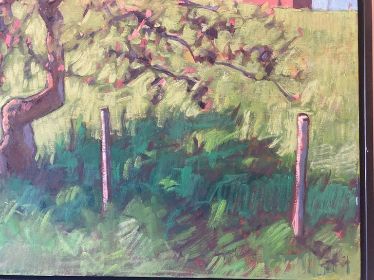 The Little Apple Tree on the Farm For Sale 2