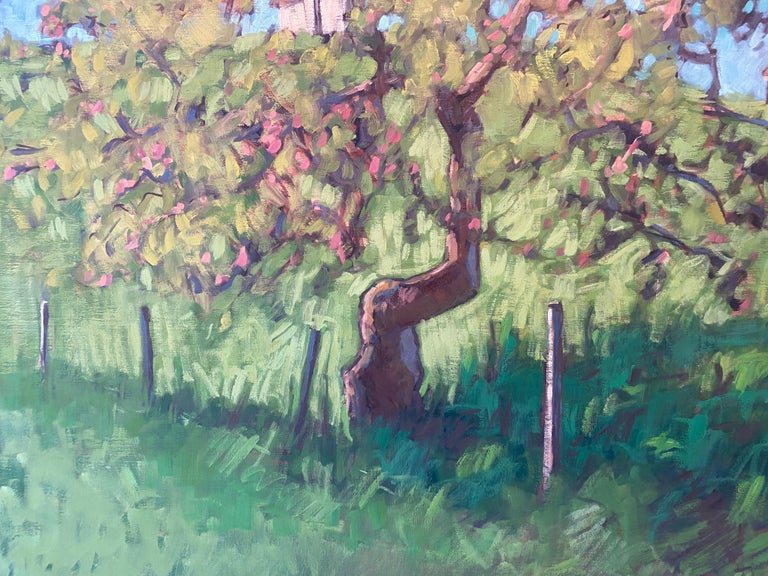 The Little Apple Tree on the Farm For Sale 4