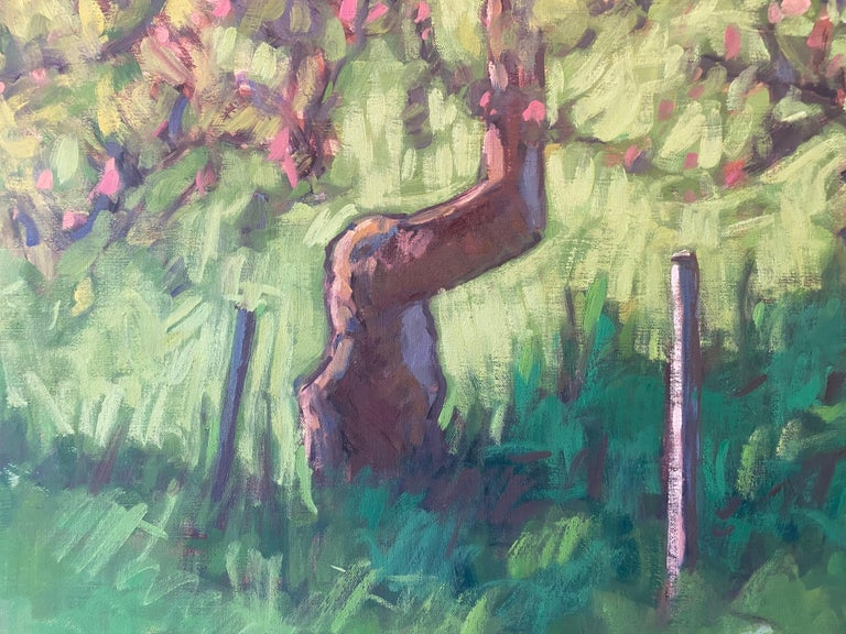 The Little Apple Tree on the Farm For Sale 5