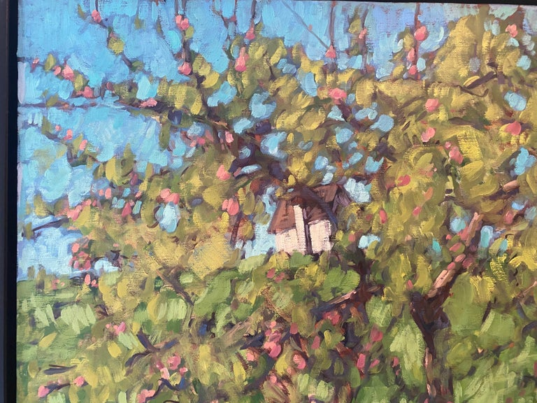 The Little Apple Tree on the Farm For Sale 6