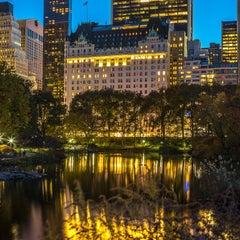 """Central Park"", Urban Color Photography, Autumn, New York City, Manhattan, Night"