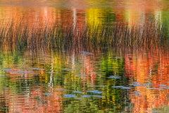 """Acadia National Park"", Color Nature Photography, Landscape, Impressionist"