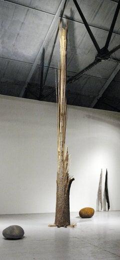 """Tornado Tree and Boulders"" Abstract, Oak Wood Sculpture by John Ruppert"