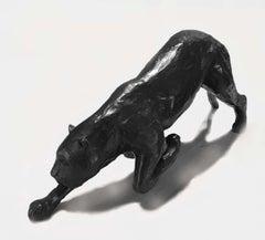 Panthère noire guettant