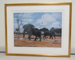 Elephant in the Jungle  Lithography