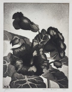 GLOXINIA - Published by the WPA / Federal Art Project with Label.