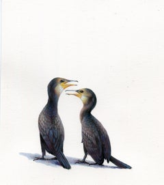 Dina Brodsky, Cormorants, realist animal watercolor on paper, 2019