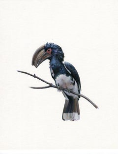Dina Brodsky, Large Bird, realist animal watercolor, 2019