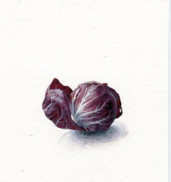 Dina Brodsky, Radicchio, realist watercolor and gouache still life, 2019