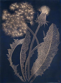 Margot Glass, Blue Dandelion, realist gold point still-life drawing, 2019