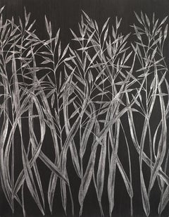 Margot Glass, Grasses, realist graphite on paper still-life drawing, 2019