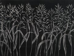 Margot Glass, Grasses (5), realist graphite on paper floral still life, 2019