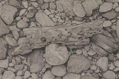 Riverbank 2, photorealist graphite nature drawing, 2018