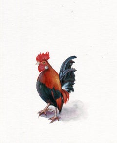 Dina Brodsky, Rooster, realist gouache on paper animal miniature, 2019